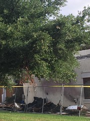 """Ruggeri's Restaurant Fire 5-23-19 • <a style=""""font-size:0.8em;"""" href=""""http://www.flickr.com/photos/159940292@N02/47995339398/"""" target=""""_blank"""">View on Flickr</a>"""