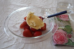 Erdbeeren zu Vanilleeis (multipel_bleiben) Tags: essen zugastbeifreunden nachtisch erdbeeren vanille eis obst