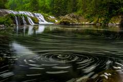 washington dougan falls by scott donschikowski.jpg (Scott Donschikowski) Tags: longexposure pool douganfalls bubbles waterfall northwest green washougalriver washington columbiarivergorge