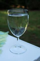 Glas Mineralwasser (multipel_bleiben) Tags: essen zugastbeifreunden wasser getränk alkoholfrei