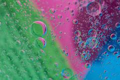 Multicolore (Gisou68Fr) Tags: macromondays oilinwater macro bleu blue rose pink vert green bulles bubbles