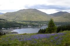 Arrochar, Scotland (philept1) Tags: water outdoors hill countryside view mountains scotland highlands arrochar loch long