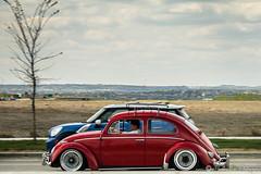 IMG_0277 (Murphy-Lee Photography) Tags: volkswagen vw golf gti jetta coupe mk1 mk2 mk3 mk4 mk5 mk6 mk7 r tdi bagged stance static audi bmw jdm euro calgary yyc eurodrivers euroyeg rotiform volk te37 bbs corrado polo turbo supercharger supercharged turbocharged beetle bug bus