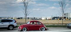 IMG_0275 (Murphy-Lee Photography) Tags: volkswagen vw golf gti jetta coupe mk1 mk2 mk3 mk4 mk5 mk6 mk7 r tdi bagged stance static audi bmw jdm euro calgary yyc eurodrivers euroyeg rotiform volk te37 bbs corrado polo turbo supercharger supercharged turbocharged beetle bug bus