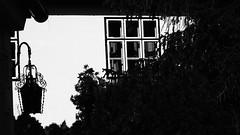 old (theflyingtoaster14) Tags: old alt mödling windos fenster lantern laterne black white bw schatten shadow architecture architektur high contrast olympus omd em1 mark ii mzuiko 12100