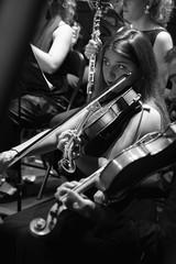 Mirada de viola (Guillermo Relaño) Tags: viola camerata musicalis especial ¿porqueesespecial orquesta concierto teatro nuevoapolo guillermorelaño sony a7 a7iii a7m3 alpha ilce alfa tchaikovsky cuarta cuatro 4 sinfonia madrid