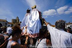 Camargue 2019-20190525 555-2 (Hatuey Photographies) Tags: camargue camargue2019 hatueyphotographies languedocroussillonmidipyrénées saintesmariesdelamer france