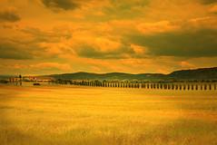 senza titolo (Enzo Ghignoni) Tags: cielo prati campi case alberi cipressi natura visit tuscany fattoria bellezza grande strada