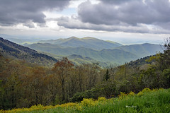 Mountains and Spring Flowers (mevans4272) Tags: mountains nc flowers trees grass landscape clouds mist
