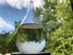 Storm glass (rachelkidwell93) Tags: nature plant plants garden grow window look storm glass macro zoom focus detail object tiny iphone portrait mode amateur trees tree sun sunny lgiht day summer spring blue sky invert perspective outdoors outside fragile decoration house screen upside down flip yard green natural phenomenon weather predict rain snow lightning thunder old vintage small fashioned trinket cute