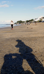 Auckland_automnShadow (Ldcha) Tags: auckland citylife beaches oceania pacific walking shadows autumn newzealand