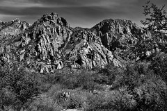 A Varying Terrain Across a Mountainside in Big Bend National Park (Black & White, Big Bend National Park) (thor_mark ) Tags: bigbendnationalpark bigbendranges blackwhite blueskieswithclouds capturenx2edited chihuahuandesert chisosbasin chisosmountains cloudwisps colorefexpro day4 desert desertlandscape desertmountainlandscape desertplantlife hiketo​thewindow hillsideoftrees intermountainwest landscape lookingne mountains mountainsindistance mountainsoffindistance mountainside nature nikond800e outside project365 pulliampeak rollinghillsides southwestbasinsandranges sunny transpecostexasranges trees triptobigbendnationalpark usbiospherereserve volcanicpast windowtrail ​thewindowtrail​ tx unitedstates