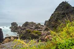 Cape Muroto Landscape (Bracus Triticum) Tags: cape muroto landscape kōchiprefecture 高知県 shikoku 四国 日本 japan 4月 四月 卯月 shigatsu uzuki unohanamonth 2019 平成31年 spring april bicycletriparoundshikoku