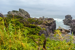 Cape Muroto (Bracus Triticum) Tags: cape muroto kōchiprefecture 高知県 shikoku 四国 日本 japan 4月 四月 卯月 shigatsu uzuki unohanamonth 2019 平成31年 spring april bicycletriparoundshikoku