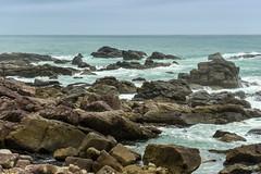 Muroto Rocks (Bracus Triticum) Tags: muroto rocks kōchiprefecture 高知県 shikoku 四国 日本 japan 4月 四月 卯月 shigatsu uzuki unohanamonth 2019 平成31年 spring april bicycletriparoundshikoku