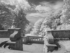 Hamburg - Römischer Garten / Roman Garden (peterkaroblis) Tags: hamburg römischergarten schwarzweis blackandwhite infrarot infrared stairs treppe baum tree clouds wolken
