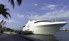 The Seafair (Aglez the city guy ☺) Tags: miamifl miamicity downtownmiami urban seashore riverwalktrail waterways walkingaround walking outdoors yacht coconuttree shore