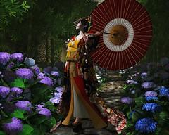 Late Spring Rain (LiangScorpio) Tags: secondlife sl oiran kanzashi kimono geta hydrangea rain spring flowers courtesan