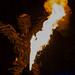 Hippiefestival Burning Man in Black Rock City feiert ohne Geld mitten in der Wüste Nevadas, nordöstlich von Reno