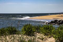 Virginia Beach (bhermann.hamburg) Tags: beach strand wasser meer water sea virginiabeach blau blue sonne sun