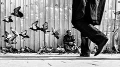 Istanbul (ale neri) Tags: street bw aleneri people turkish istanbul turkey batis225 streetphotography blackandwhite alessandroneri