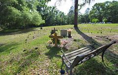 5_weeks_south__411 (kLIMEKk) Tags: usa south 2019 burnt fort chapel cemetery camden county georgia