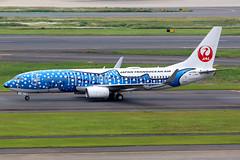 Japan Transocean Air | Boeing 737-800 | JA05RK | Jinbei Jet livery | Tokyo Haneda (Dennis HKG) Tags: aircraft airplane airport plane planespotting oneworld canon 7d 100400 tokyo haneda rjtt hnd japanairlines jal jl japan japantransoceanair jta nu boeing 737 737800 boeing737 boeing737800 ja05rk