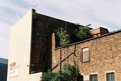 22. Abandoned Textile Factory, Ancoats (joe.mckie) Tags: pentaxmesuper 35mm kodakgold200 35mmfilmphotography
