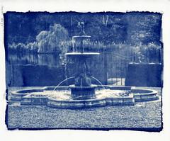 Cyano Ch.Bayard_HD (cedricmuscat) Tags: cyanotype kozo washi alternativephotography