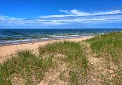 Beach Grass (mswan777) Tags: shore beach coast dune sand grass water sky cloud horizon blue white seascape outdoor nature scenic michigan apple iphone iphoneography mobile