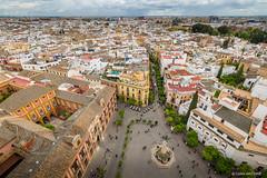 View form the Giralda (Sevilla) (cedant1) Tags: europe europa spain espana espagne andalousia andalousie city nikon nikond750 giralada cathedral séville sevilla panoramic uwa afs1635f4
