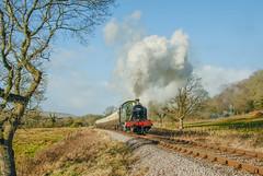 Leigh Woods 83.jpg (alanturner317) Tags: tank up gwr railways passenger year2007 5553 prarie westsomerset