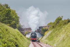 Washford 50.jpg (alanturner317) Tags: passenger prarie gwr railways year2008 up 5553 tank westsomerset