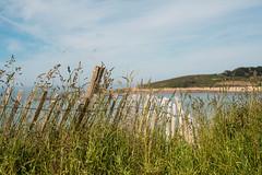 At the seaside (~ Jessy S ~) Tags: beach plage sea mer ocean nikon d750 nikkor sky ciel blue bleu water scape paysage nikkor50mmf18 50mm 18