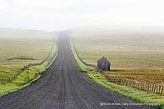 The Road Less Traveled (Gary Grossman) Tags: prairie zumwalt oregon landscape fog spring northwest beauty garygrossman zumwaltprairie landscapephotography pacificnorthwest