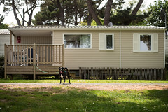Mobile home (~ Jessy S ~) Tags: nikon d750 nikkor 50mm 18 camping mobilehome dog doggy chien grass green sun vert soleil vacances holidays