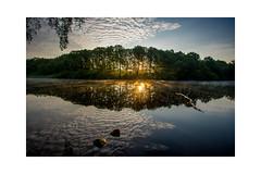 Spiegelungen im See (jan.mueller92) Tags: 1740mmf4l 6d bredenbekerteich flickr fototechnik gegenlicht jahreszeiten landschaft markii nebel see sommer sonnenaufgang spiegelung steine tageszeit wasser