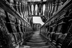 """Stairs • <a style=""""font-size:0.8em;"""" href=""""http://www.flickr.com/photos/126602711@N06/48001214116/"""" target=""""_blank"""">View on Flickr</a>"""