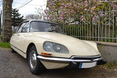 Citroën DS Super (Monde-Auto Passion Photos) Tags: voiture vehicule auto automobile citroën ds super berline beige ancienne classique collection rassemblement france courtenay