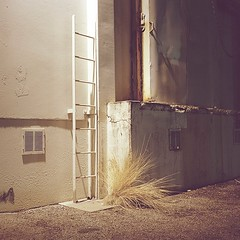 Ladder (ADMurr) Tags: la eastside night ladder grass loading rescan drum fullframe rolleiflex 35 e zeiss planar kodak portra 400 2014 dba1131editaprint2 6x6 square mf