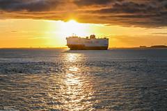 Grande Mediterraneo (Malte Kopfer Photography) Tags: carcarrier autotransporter rollonrolloff roro terneuzen sunrise sonnenaufgang scheldt westerschelde ship grimaldi grimaldilines earlymorning