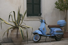 Potted plant and  blue scooter (dramadiva1) Tags: scootercorfuplantpot