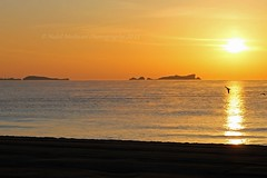 Paysage : Winter Sunrise from Fréjus Plage. (Nabil Molinari Photography) Tags: paysage winter sunrise from fréjus plage