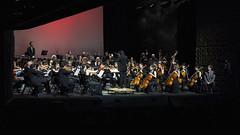 Camerata (Guillermo Relaño) Tags: camerata musicalis orquesta concierto teatro nuevoapolo madrid guillermorelaño tchaikovsky alfa alpha ilce a7 a7iii a7m3 cuarta cuatro 4 sinfonia especial ¿porqueesespecial