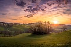 A7307462_s (AndiP66) Tags: altbüron kanton luzern canton lucerne schweiz switzerland sonnenuntergang sunset sonne sun evening abend april frühling 2019 sony sonyalpha 7markiii 7iii 7m3 a7iii alpha ilce7m3 andreaspeters sonyfe24105mmf4goss sony24105mm 24105mm emount sel24105g