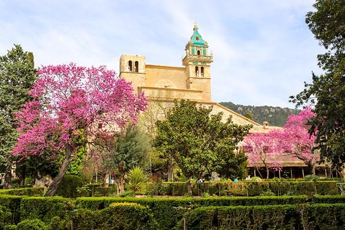 Iglesia de la Cartuja - Kirche der Kartause in Valldemossa auf Mallorca, Spanien