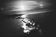 L1008083.jpg (Dan Chippendale) Tags: m10 leicam10 leica isleofwight holiday seaside leicadigital leicaphoto leicaphotography