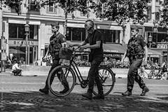 Cycliste clandestin. Paris, juin 2019 (Bernard Pichon) Tags: paris france bpi760 fr75 elysées vélo gendarme police autorité cycliste funny street rue scène comic