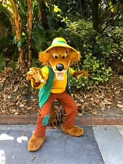 Meeting Br'er Fox (Disney Dan) Tags: disneycharacters disneyshollywoodstudios spring waltdisneyworld disney sunsetboulevard disneyparks songofthesouth 2019 brerfox may character characters dhs disneycharacter disneyphoto disneypics disneypictures disneyworld fl florida hollywoodstudios mai orlando travel usa vacation wdw