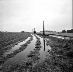 wolkenbruch, danach (jo.sa.) Tags: landschaft lebensraum acker analog analogefotografie wasser bw schwarzweiss rollfilm mittelformat 6x6 schwarzweissfotografie